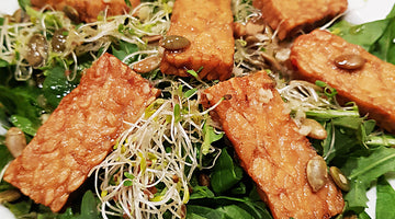 Tempeh Steak Recipe - Vegan, Gluten Free and Sugar Free!