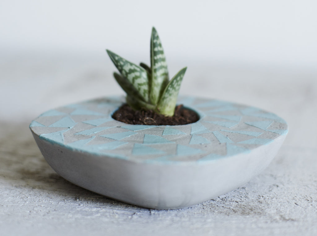 Blue and grey asymmetric concrete succulent planter