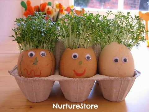 Egg Heads with Cress Hair Nuture Store