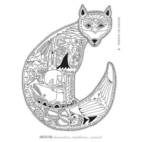 Adult colouring book fox illustration