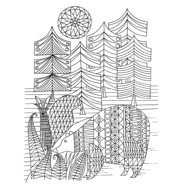 Adult colouring book bear in the woods illustration