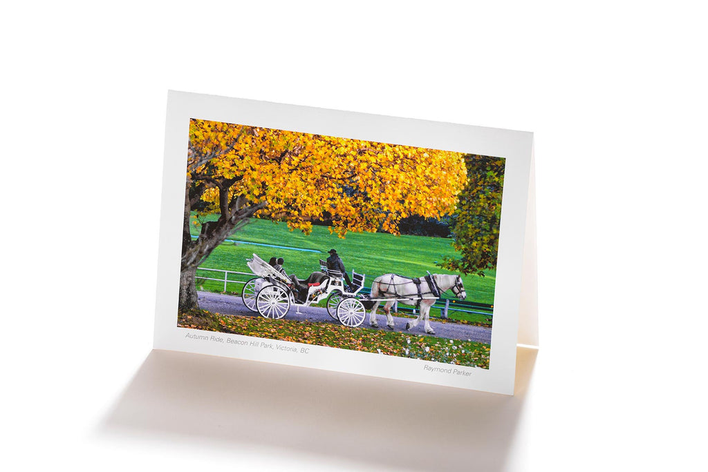 Autumn Ride, Beacon Hill Park, Victoria, BC (Greeting Card)