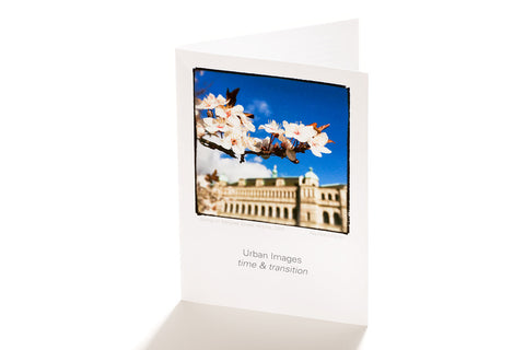 Spring on Menzies Street, Victoria (Greeting Card)