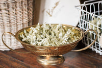 Brass Bowl with Greenery