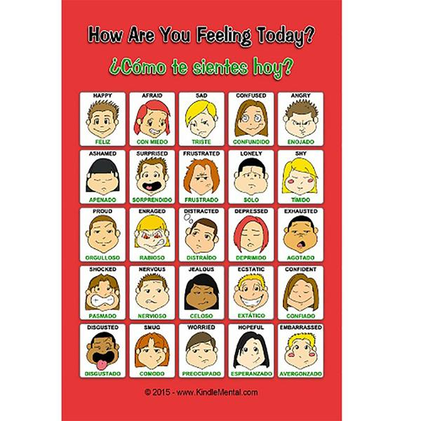 Mini Spanish/English Feelings Poster with Graphics Set of 12