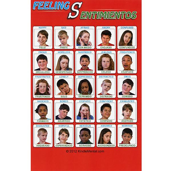 Mini Spanish/English Youth Feelings Poster Set of 12