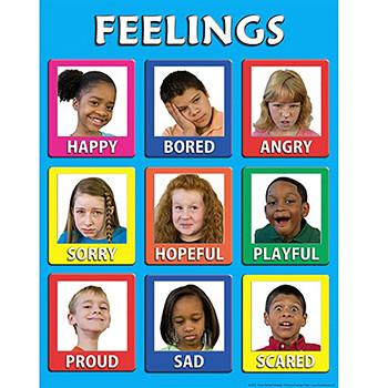 Young Children's Feelings Poster Laminated
