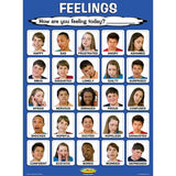 Laminated Teen Feelings Poster 18 x 24 inches