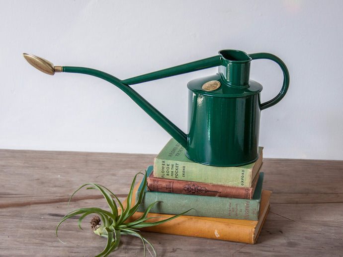 Indoor Metal Watering Can in Green