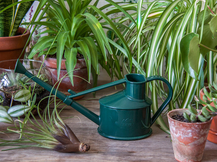 Bottle Green Mini Watering Can