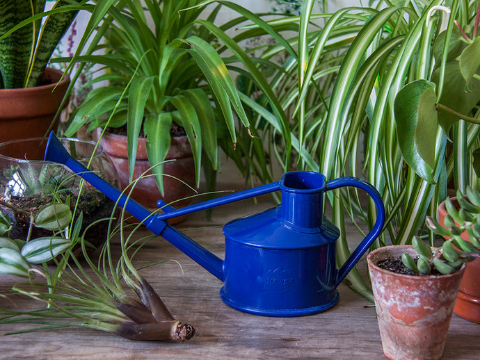 Dark Blue Mini Watering Can