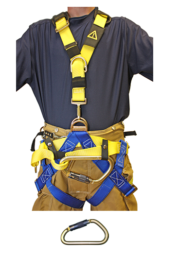 "Class II Convertible Harness, Right open, 36"" to 50"""
