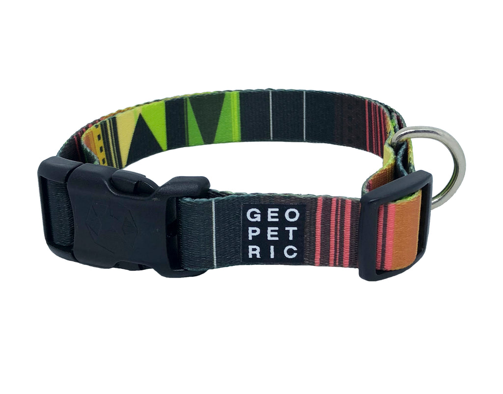 Pawsome Standard Dog Collar