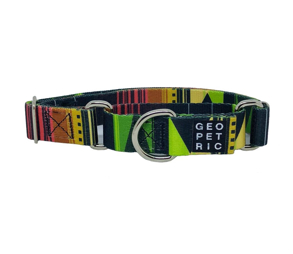 Pawsome Martingale Dog Collar