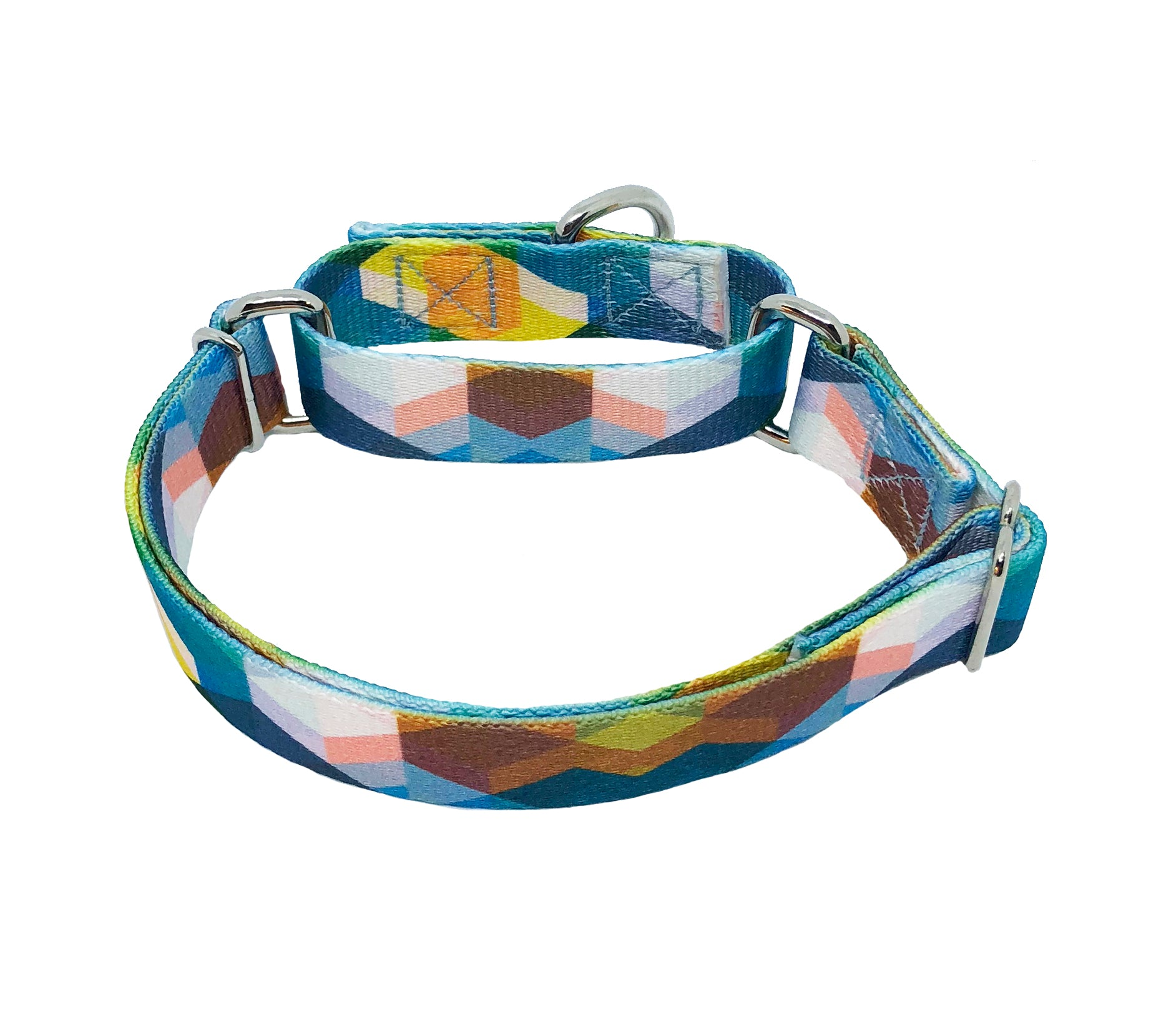 Play Day Martingale Dog Collar