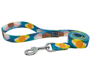 Play Day Leash