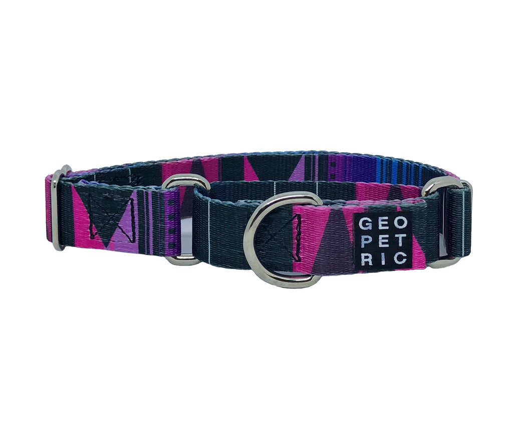 Purple Pawsome Martingale Dog Collar