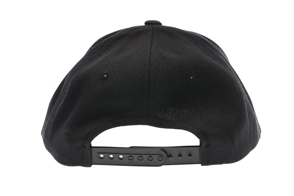 2019 Haro Script Snap Back Hat Black rear.