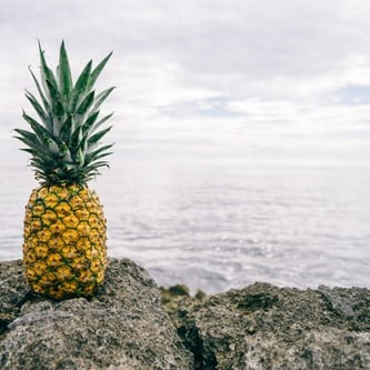 Wild Beach Handmade Soap - Pineapple Punch | COMING SOON!!!