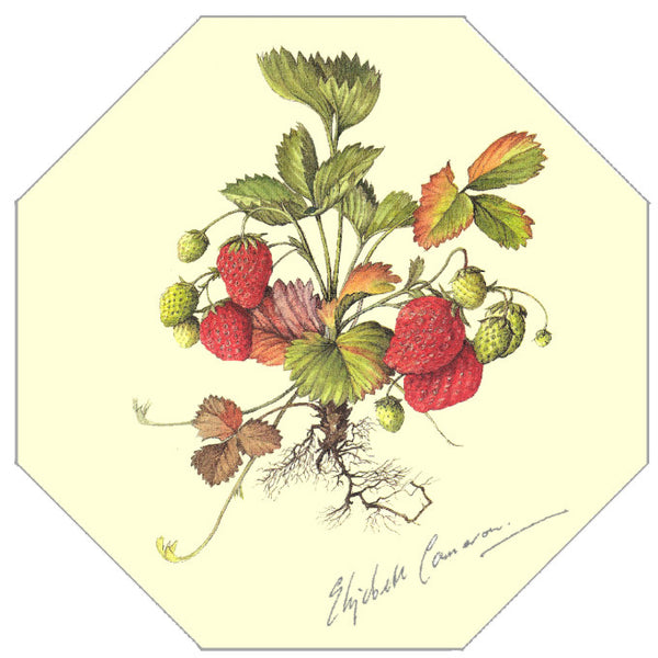 Elizabeth Cameron Strawberry Hexagonal Placemat