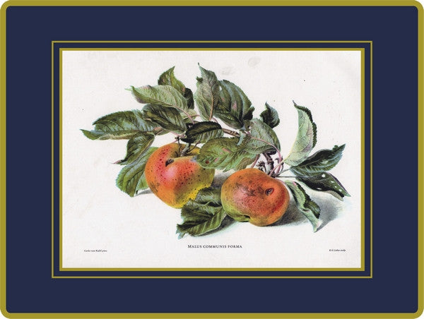 4 x Ebbels Fruits Placemats