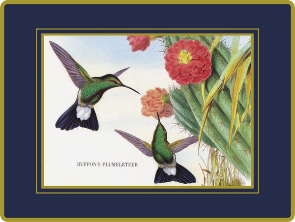Set of 4 Ebbels Humming Birds Coasters