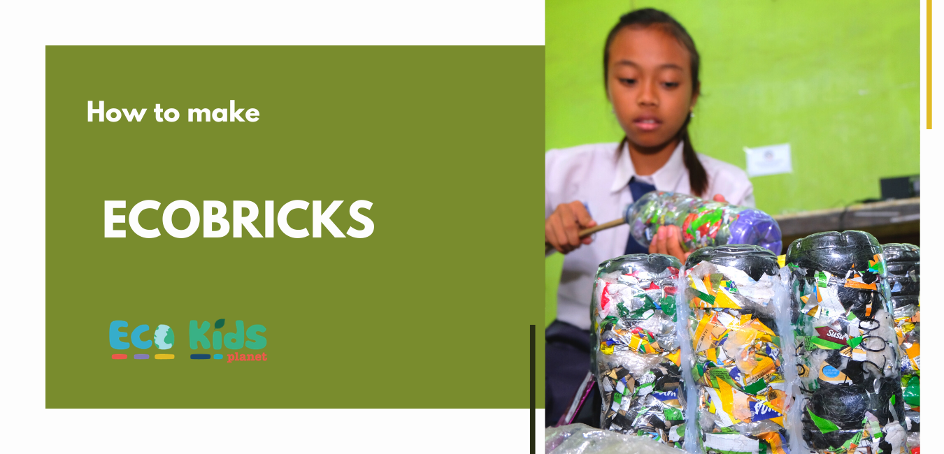 Make Your Own: Ecobricks