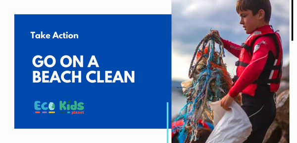 Top Tips for going on a Beach Clean!