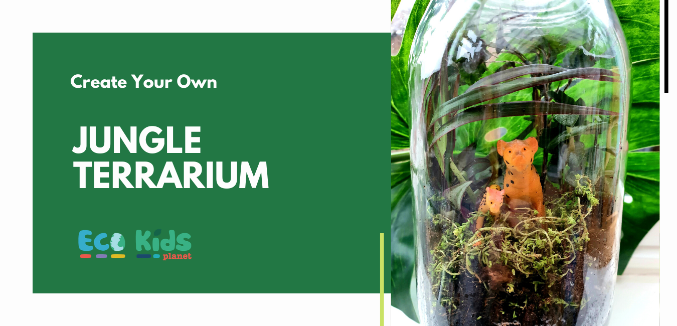 Make your own: Jungle Terrarium