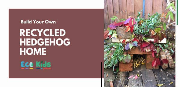 Build Your Own: Recycled Hedgehog Home