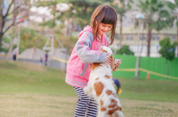 How spending time with animals can improve your child's wellbeing