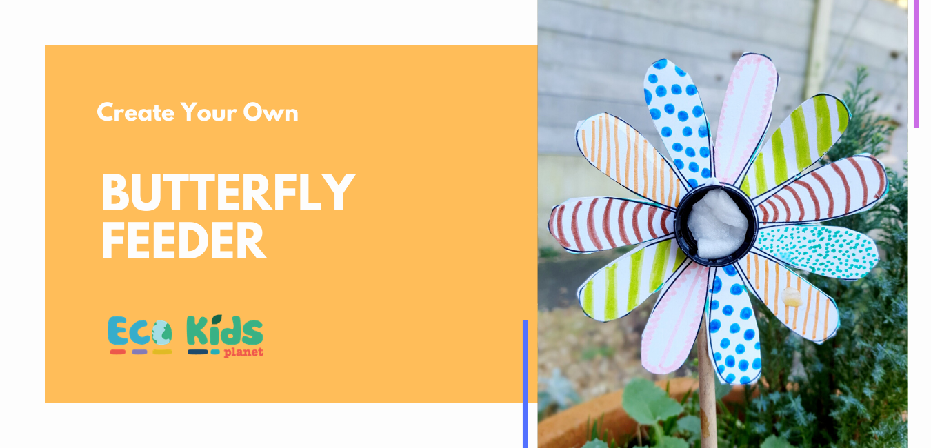 Make Your Own: Butterfly Feeder