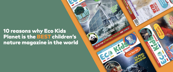 10 Reasons Why Eco Kids Planet is THE Best Children's Nature Magazine in the World