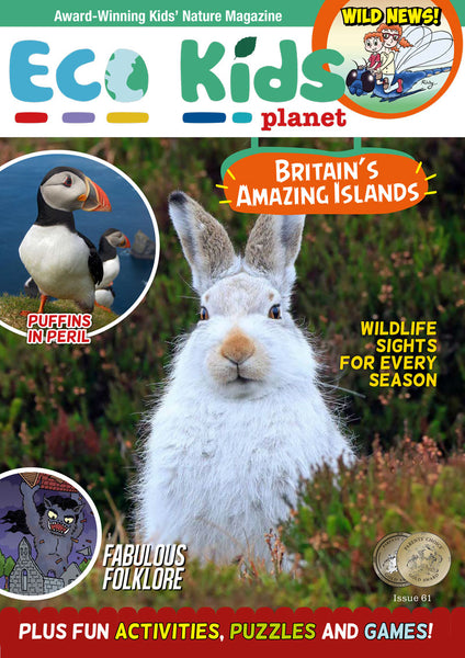 Eco Kids Planet Magazine Subscriptions