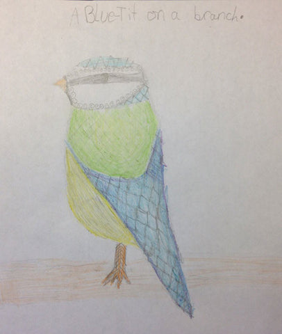 blue-tit-child-drawing