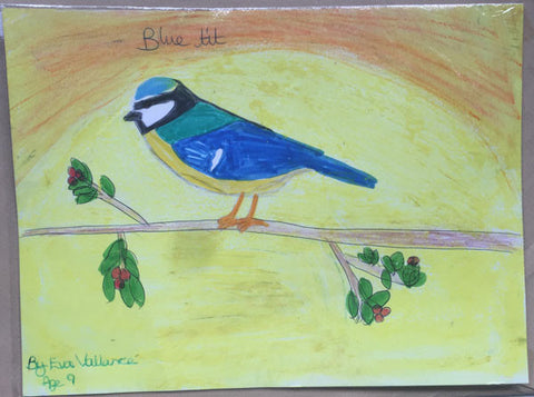 blue-tit-children-drawing