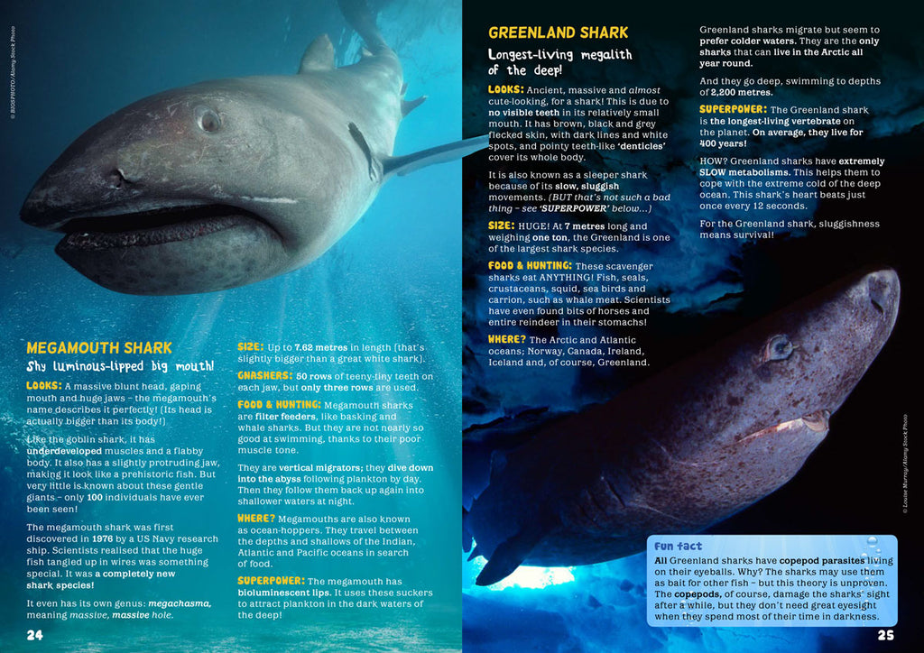 deep-sea-sharks-2