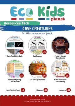 Resource pack for issue 72, Cave Creatures