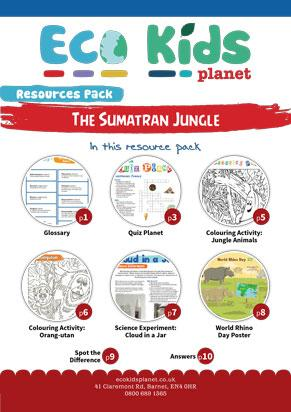 The Sumatran Jungle