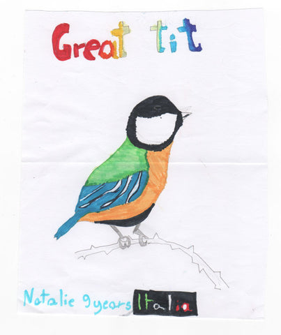 great-tit-children-drawing