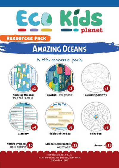 The Amazing Oceans