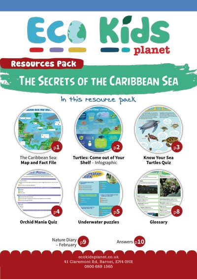 natural resources quiz for kids