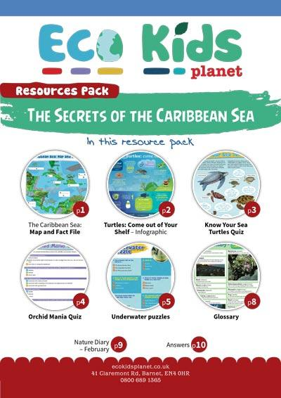 Secrets of the Carribean Sea