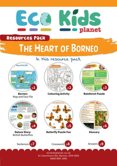 The Heart of Borneo