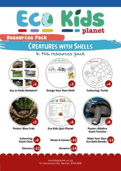 Resource pack for issue 67, Creatures with Shells