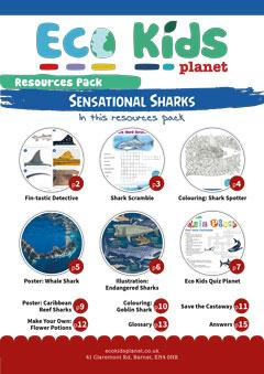 Resource pack for issue 68, Sensational Sharks
