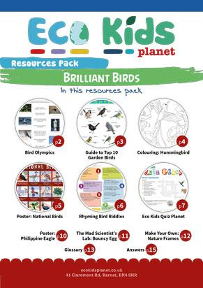 Resource pack for issue 69-70, Brilliant Birds