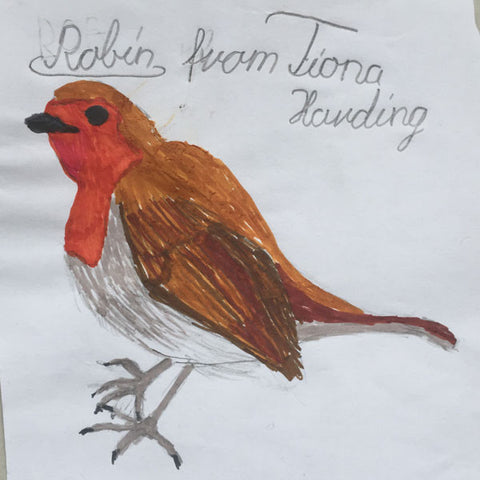 children-drawing-robin