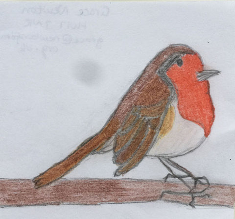 robin-child-drawing