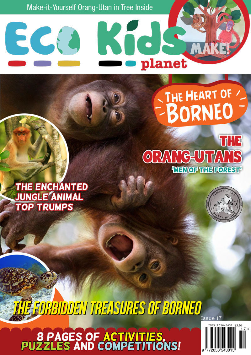 Kid's Nature Magazines - Issue 17 - The Heart of Borneo